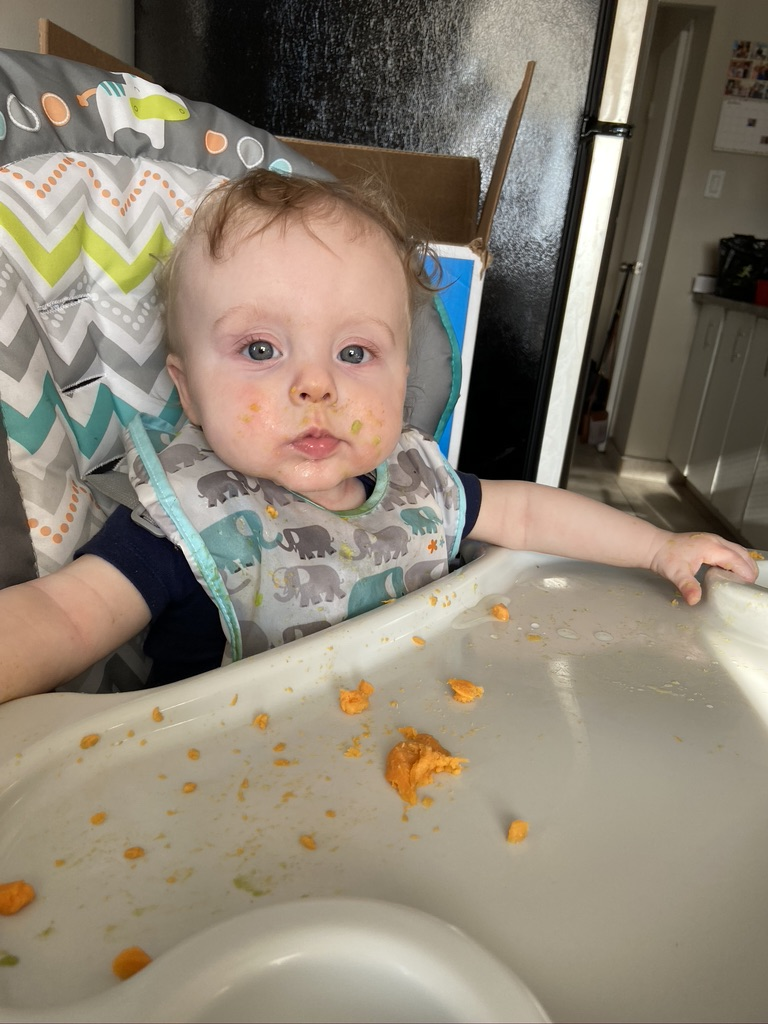 The Best Foods for Baby Led Weaning – 6 Months